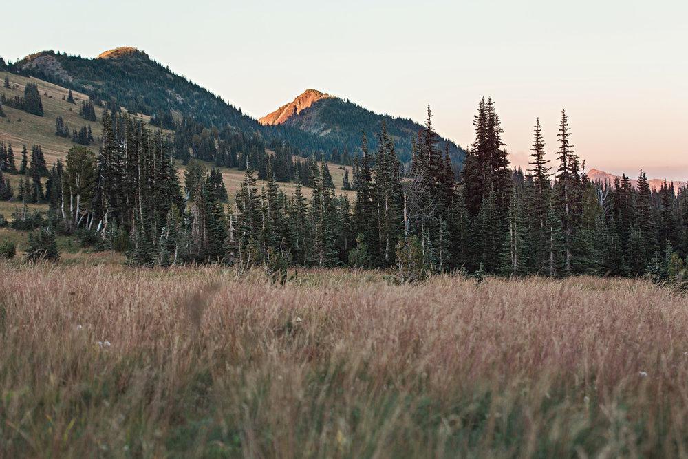 CindyGiovagnoli_Mount_Rainier_National_Park_Washington-035.jpg