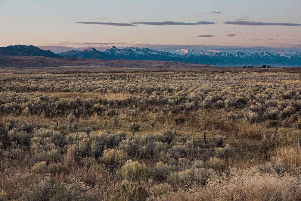 CindyGiovagnoli_road_trip_Nevada_Idaho-010.jpg