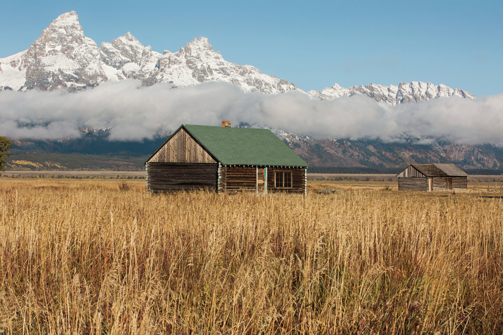 CindyGiovagnoli_Grand_Teton_National_Park_mountains_Bison_Autumn_Wyoming_Mormon_Row_aspens_fall_outdoor_photographer-038.jpg