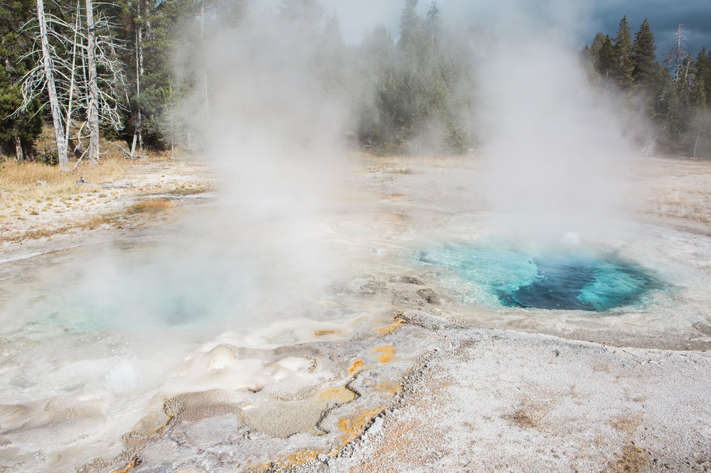 CindyGiovagnoli_road_trip_Yellowstone_National_Park_Montana_Wyoming_hot_springs_geyser_Old_Faithful_Grand_Prismatic-007.jpg