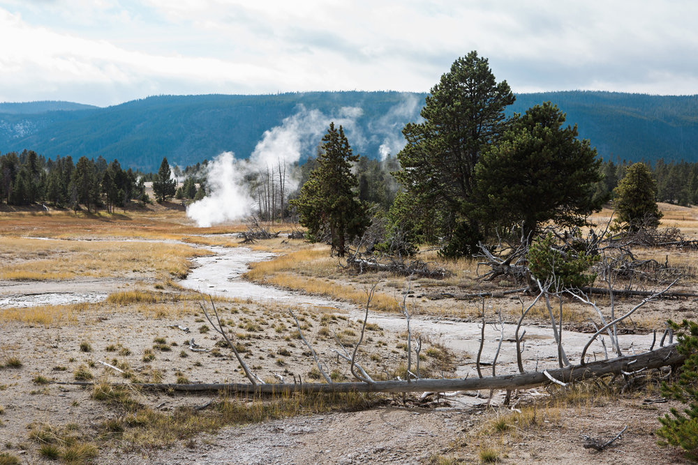 CindyGiovagnoli_road_trip_Yellowstone_National_Park_Montana_Wyoming_hot_springs_geyser_Old_Faithful_Grand_Prismatic-008.jpg