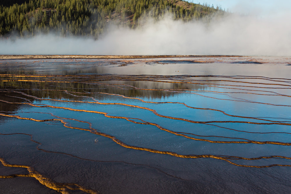 CindyGiovagnoli_road_trip_Yellowstone_National_Park_Montana_Wyoming_hot_springs_geyser_Old_Faithful_Grand_Prismatic-021.jpg