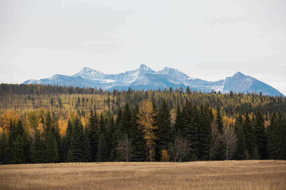 CindyGiovagnoli_Glacier_National_Park_Montana_mountains_lake_fall_autumn_road_trip-034.jpg