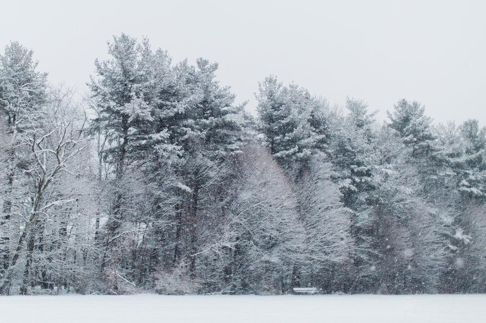 CindyGiovagnoli_New_Hampshire_New_England_snow_winter-002.jpg
