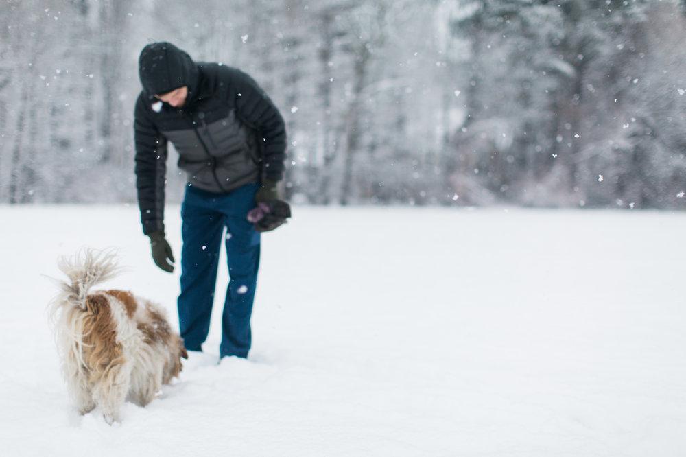 CindyGiovagnoli_New_Hampshire_New_England_snow_winter-003.jpg