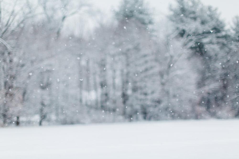 CindyGiovagnoli_New_Hampshire_New_England_snow_winter-007.jpg