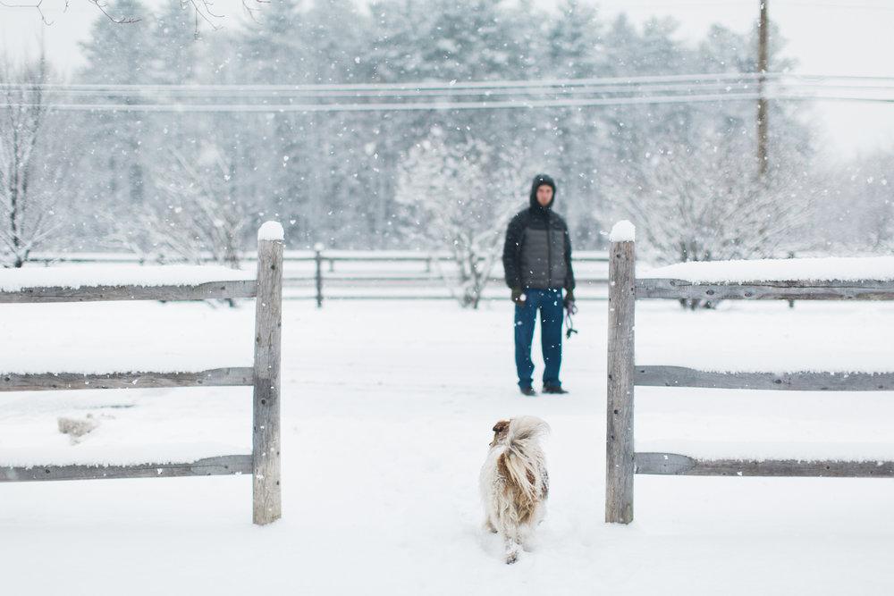 CindyGiovagnoli_New_Hampshire_New_England_snow_winter-011.jpg