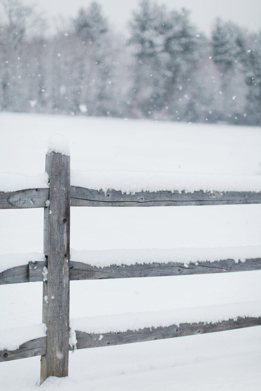 CindyGiovagnoli_New_Hampshire_New_England_snow_winter-012.jpg
