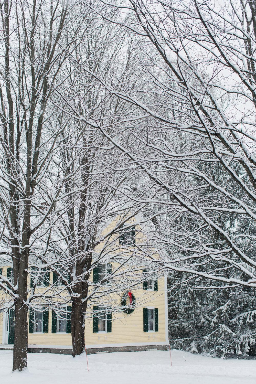 CindyGiovagnoli_New_Hampshire_New_England_snow_winter-013.jpg