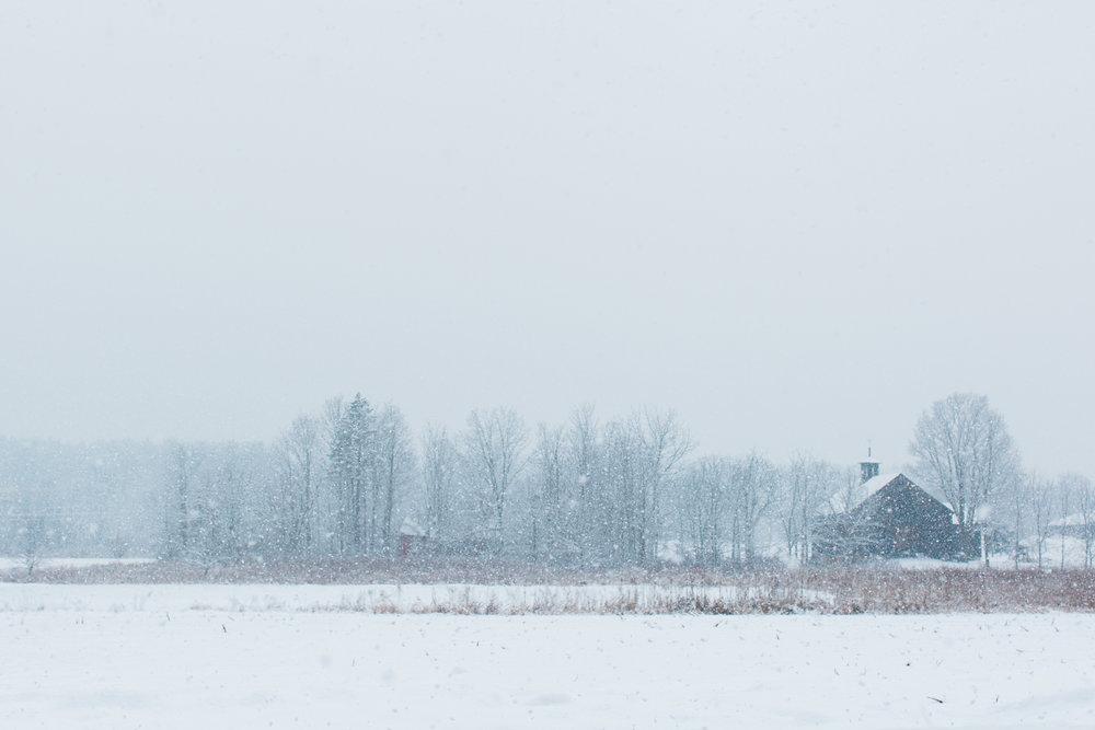 CindyGiovagnoli_New_Hampshire_New_England_snow_winter-017.jpg