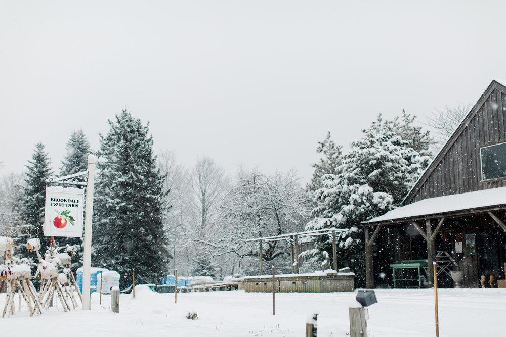 CindyGiovagnoli_New_Hampshire_New_England_snow_winter-016.jpg