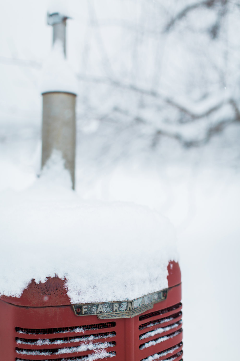 CindyGiovagnoli_New_Hampshire_New_England_snow_winter-023.jpg