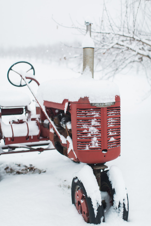 CindyGiovagnoli_New_Hampshire_New_England_snow_winter-022.jpg