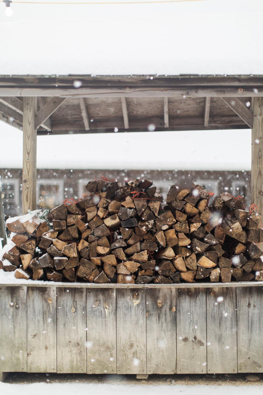 CindyGiovagnoli_New_Hampshire_New_England_snow_winter-025.jpg
