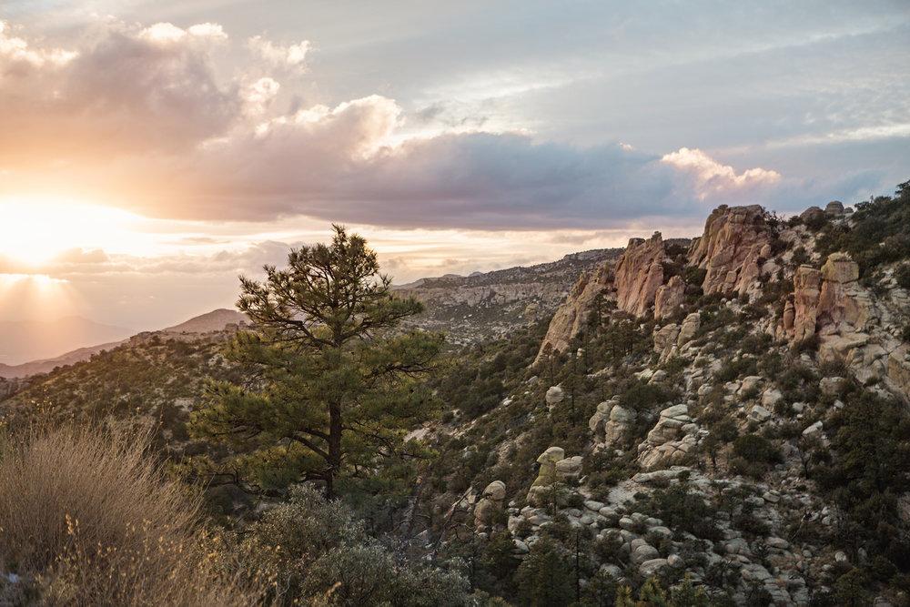 CindyGiovagnoli_Tucson_Arizona_MtLemmon_sunset_roadtrip-009.jpg