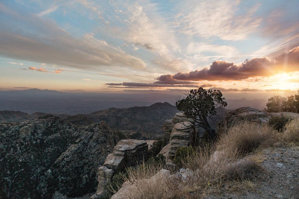 CindyGiovagnoli_Tucson_Arizona_MtLemmon_sunset_roadtrip-011.jpg