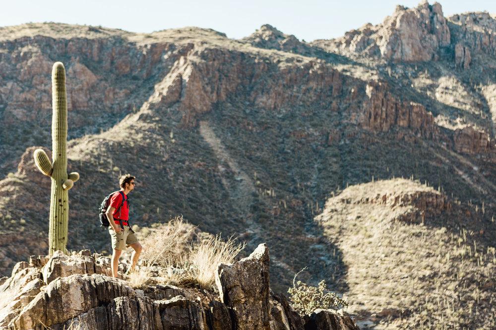 CindyGiovagnoli_Tucson_Arizona_Sabino_Canyon_Phone_Line_Trail_Uinta_Brewing_saguaro_cactus_desert_hiking-008.jpg
