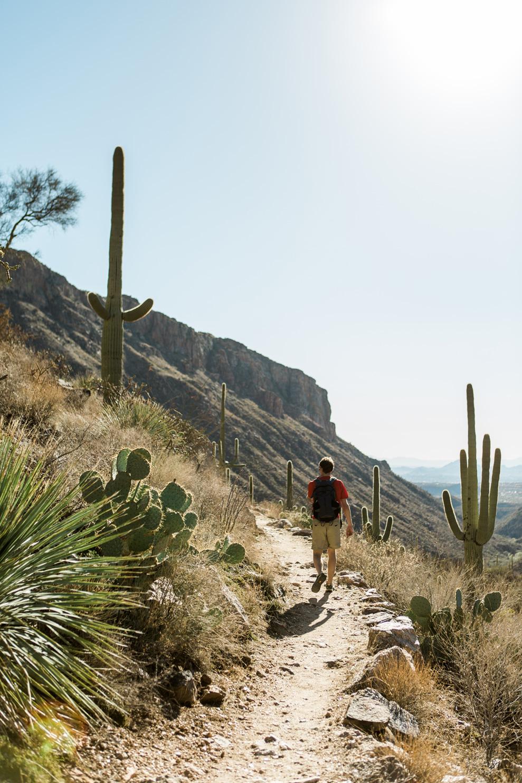 CindyGiovagnoli_Tucson_Arizona_Sabino_Canyon_Phone_Line_Trail_Uinta_Brewing_saguaro_cactus_desert_hiking-010.jpg