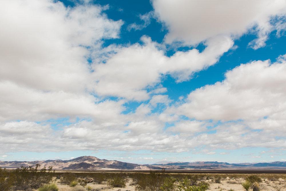 CindyGiovagnoli_Joshua_Tree_National_Park_California_Mojave_Desert_Cholla_Garden_Hidden_Valley_climbing_hiking_camping-003.jpg