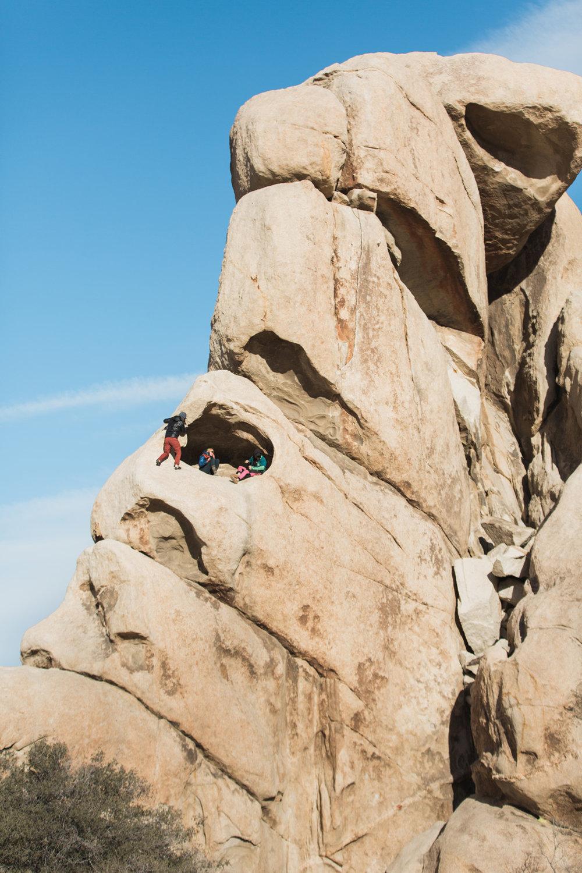CindyGiovagnoli_Joshua_Tree_National_Park_California_Mojave_Desert_Cholla_Garden_Hidden_Valley_climbing_hiking_camping-011.jpg