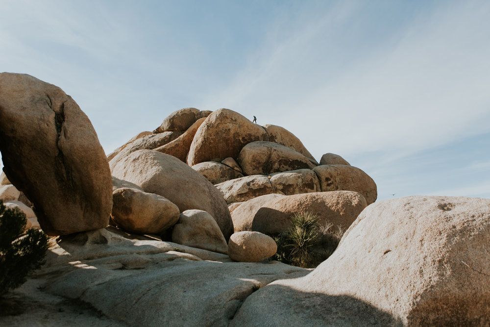 CindyGiovagnoli_Joshua_Tree_National_Park_California_Mojave_Desert_Cholla_Garden_Hidden_Valley_climbing_hiking_camping-023.jpg