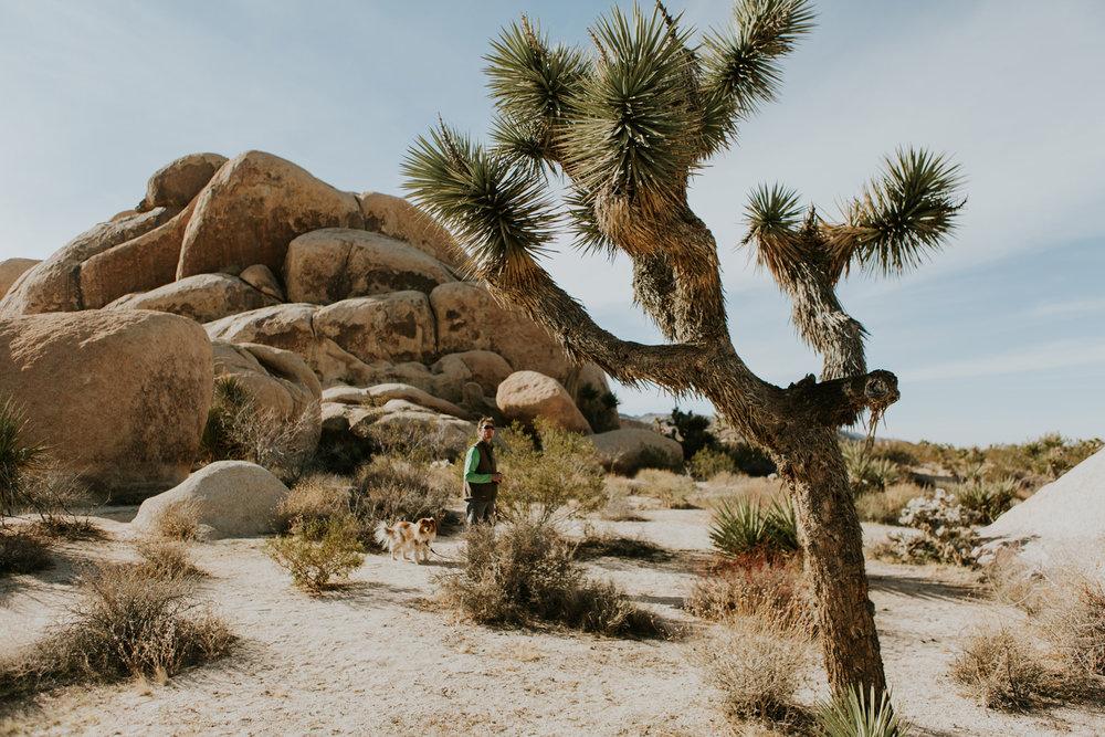 CindyGiovagnoli_Joshua_Tree_National_Park_California_Mojave_Desert_Cholla_Garden_Hidden_Valley_climbing_hiking_camping-027.jpg