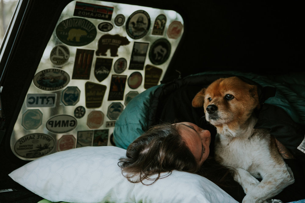 CindyGiovagnoli_Tucson_Arizona_MtLemmon_camping_Saguaro_desert_ocotillo-001.jpg