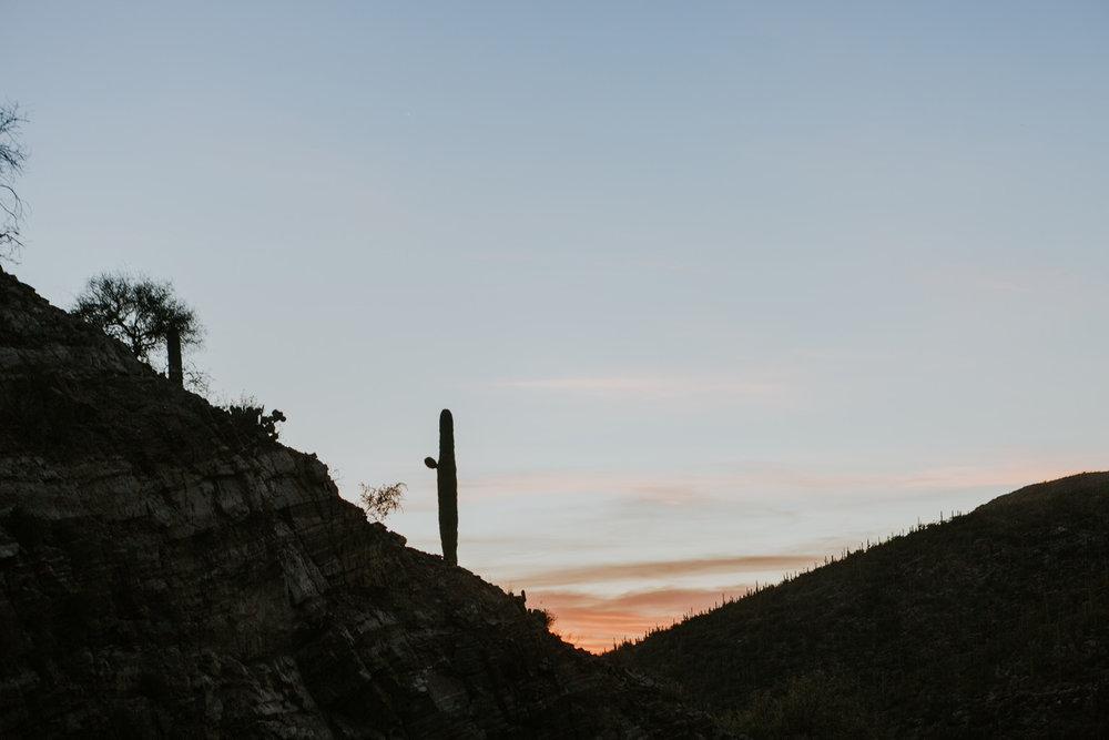 CindyGiovagnoli_Tucson_Arizona_MtLemmon_camping_Saguaro_desert_ocotillo-011.jpg