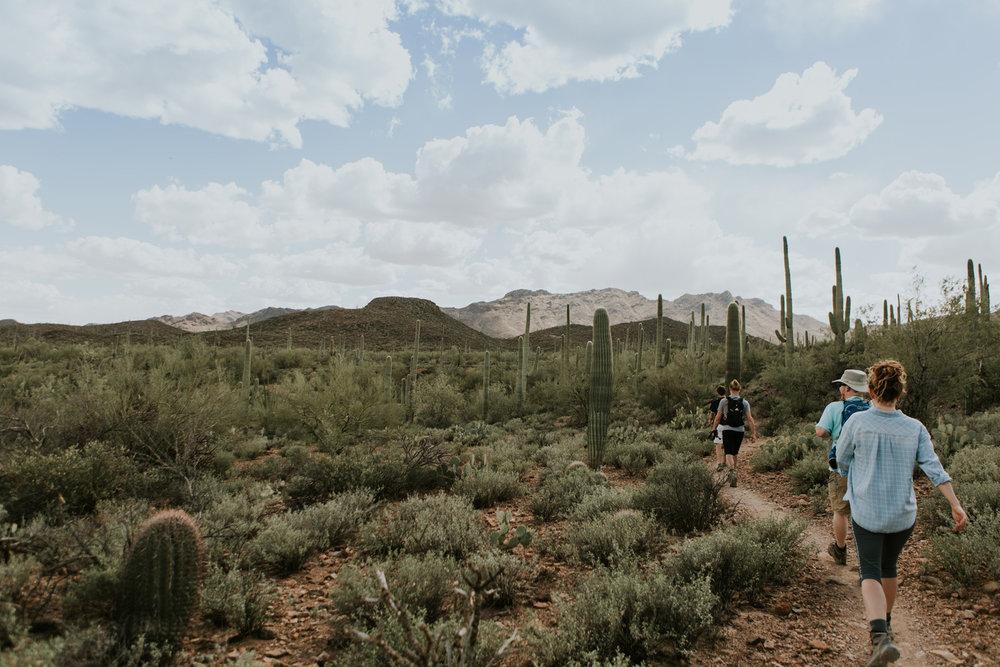 CindyGiovagnoli_Tucson_Arizona_MtLemmon_camping_Saguaro_desert_ocotillo-013.jpg