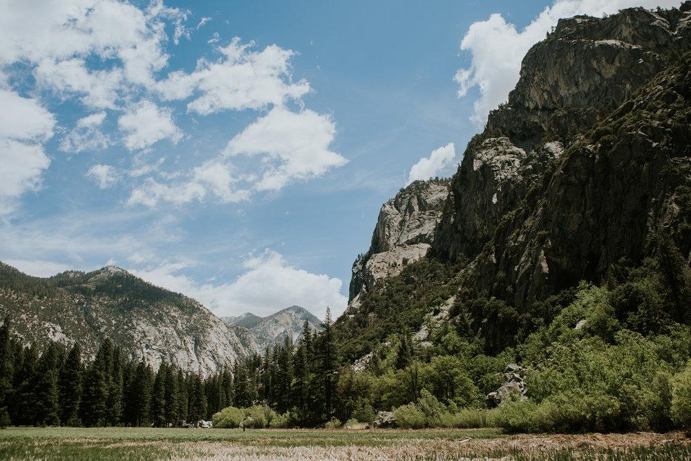 CindyGiovagnoli_Sequoia_Kings_Canyon_National_Park_California_bear_camping_roadtrip_travel-003.jpg