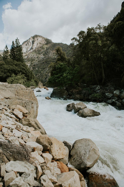CindyGiovagnoli_Sequoia_Kings_Canyon_National_Park_California_bear_camping_roadtrip_travel-004.jpg
