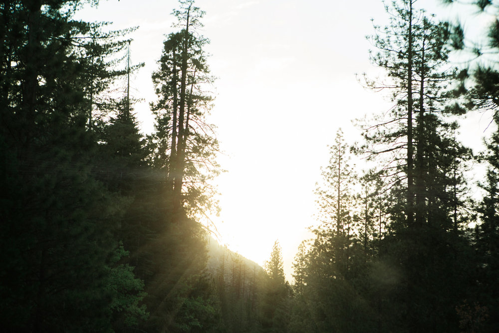 CindyGiovagnoli_Sequoia_KingsCanyon_National_Park_California_forest_fire-007.jpg