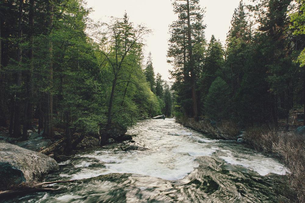 CindyGiovagnoli_Sequoia_KingsCanyon_National_Park_California_forest_fire-014.jpg
