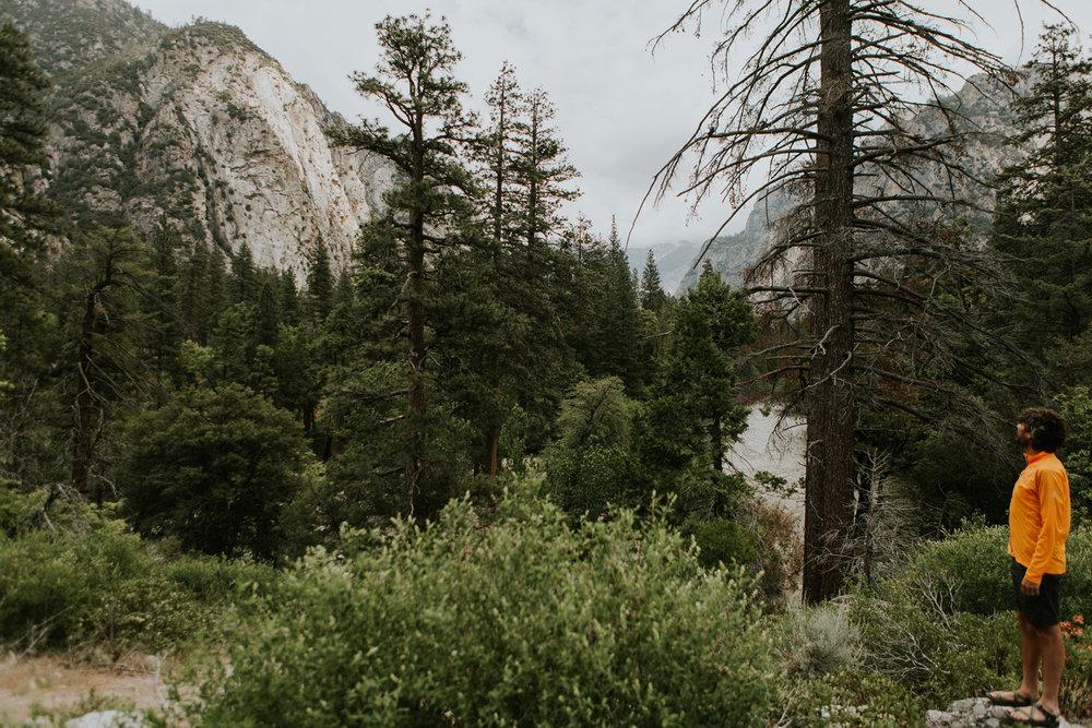 CindyGiovagnoli_Sequoia_KingsCanyon_National_Park_California_forest_fire-018.jpg