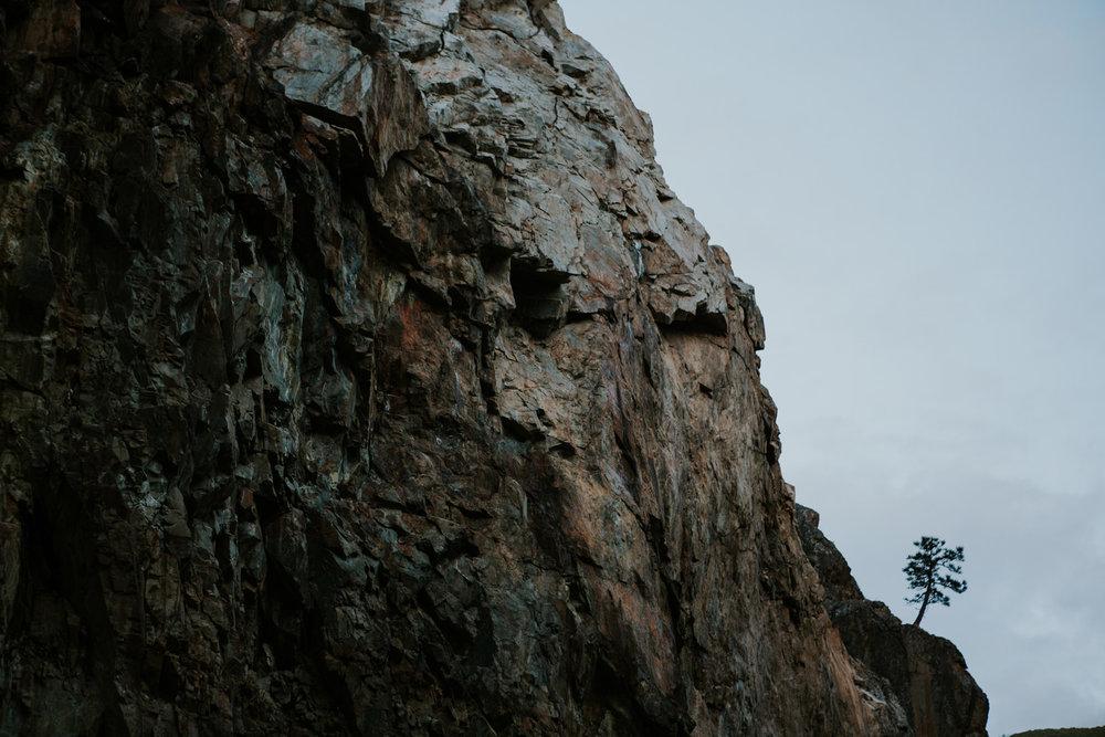 CindyGiovagnoli_Sequoia_KingsCanyon_National_Park_California_forest_fire-019.jpg