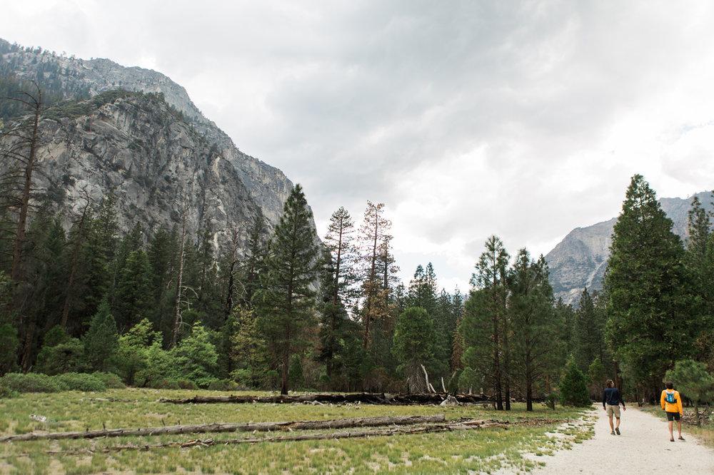 CindyGiovagnoli_Sequoia_KingsCanyon_National_Park_California_forest_fire-030.jpg