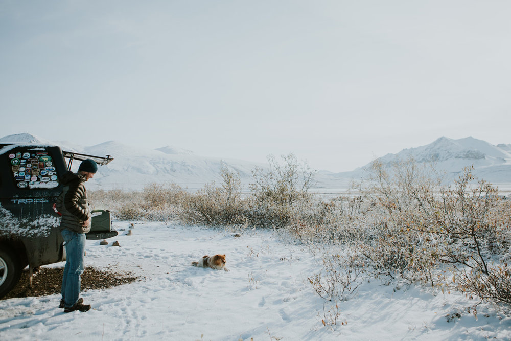 CindyGiovagnoli_Alaska_DaltonHighway_GalbraithLake_NorthSlope_GatesOfTheArctic_ArcticCircle_ArcticNationalWildlifeRefuge_Moose_DallSheep_snow_winter_BrooksRange-025.jpg