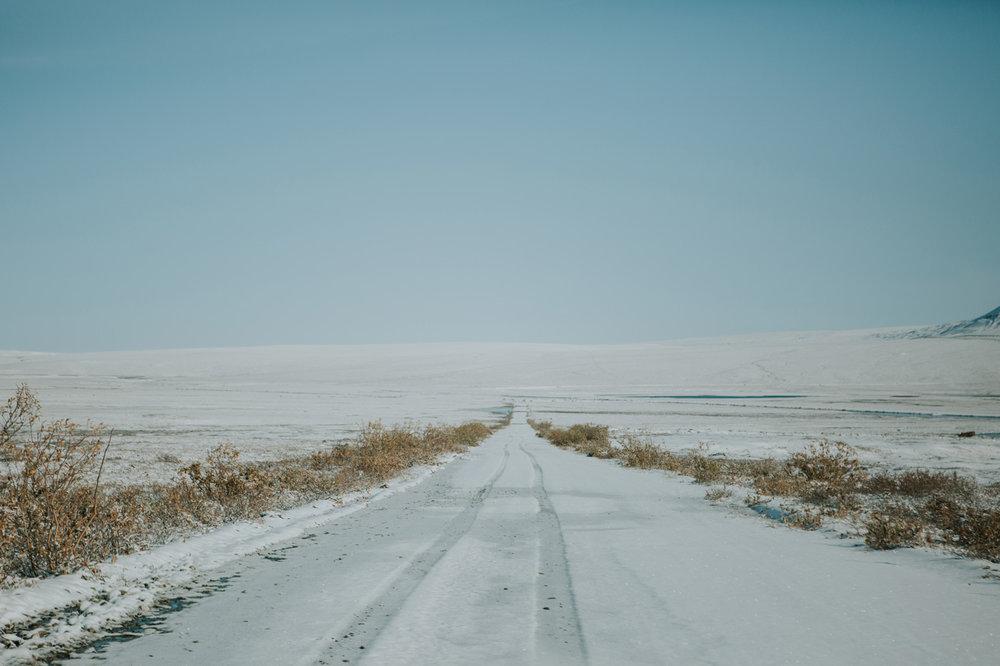 CindyGiovagnoli_Alaska_DaltonHighway_GalbraithLake_NorthSlope_GatesOfTheArctic_ArcticCircle_ArcticNationalWildlifeRefuge_Moose_DallSheep_snow_winter_BrooksRange-029.jpg