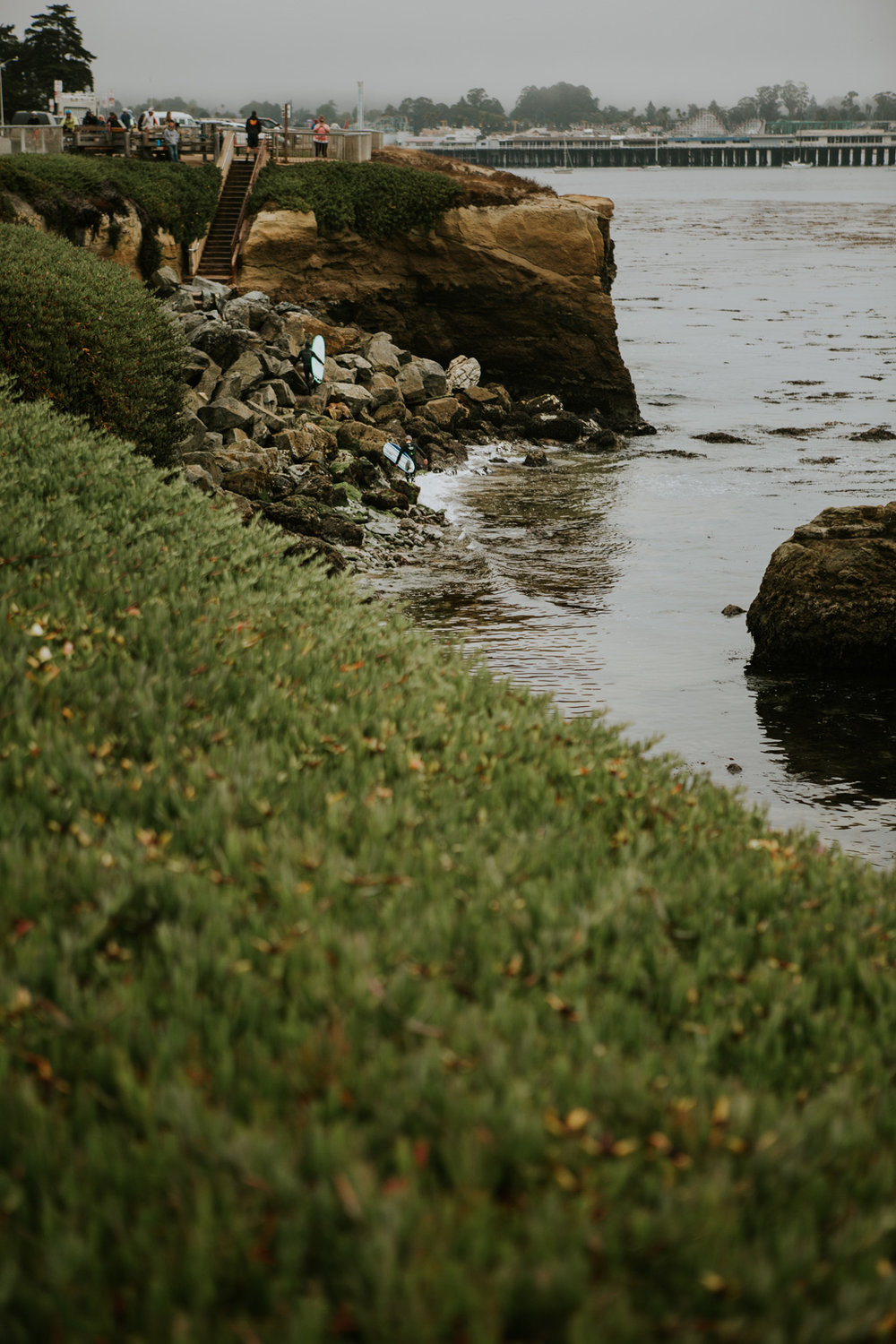 CindyGiovagnoli_SantCruz_SanJose_SanFrancisco_NelderGrove_sea_lions_boardwalk_hapas_brewery_sourdough_ocean_half_moon_bay_California-077.jpg