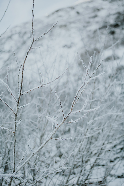 CindyGiovagnoli_hiking_glacier_Anchorage_snow_winter_ByronGlacier_Alaska-008.jpg