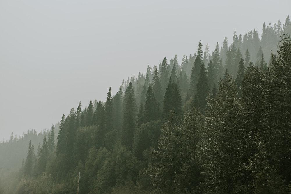 CindyGiovagnoli_British_Columbia_Yukon_Alaska_Canadian_Rockies_mountains_roadtrip--005.jpg