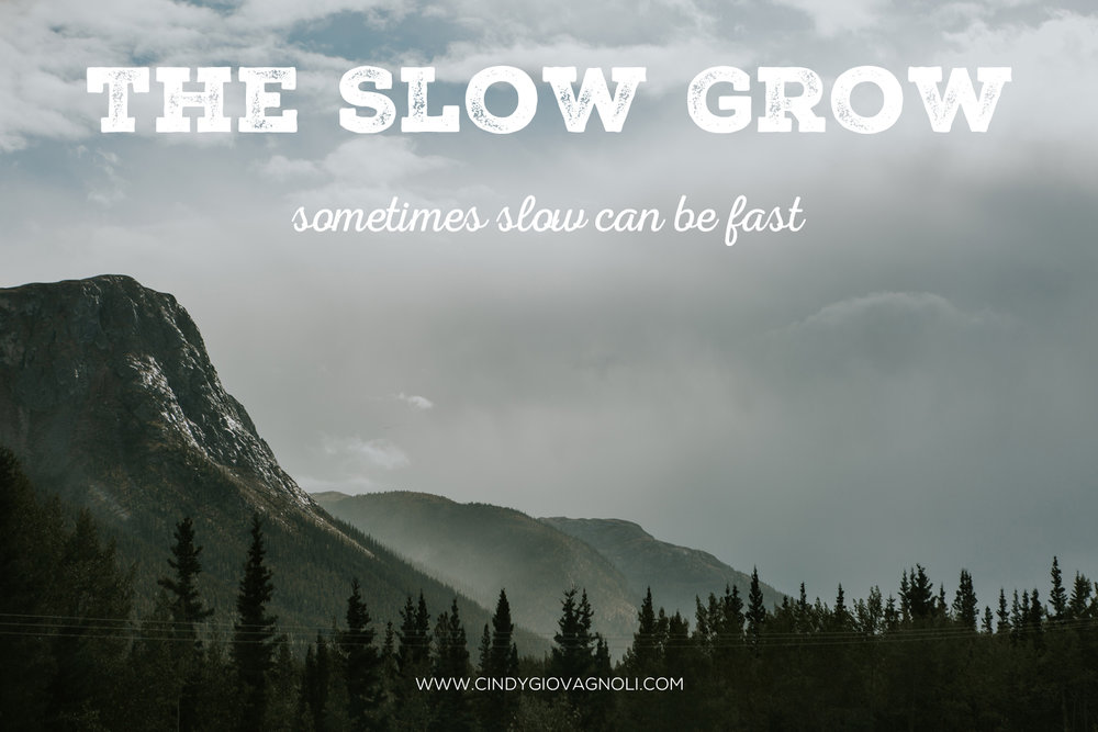 SlowGrow_3-6-19.jpg
