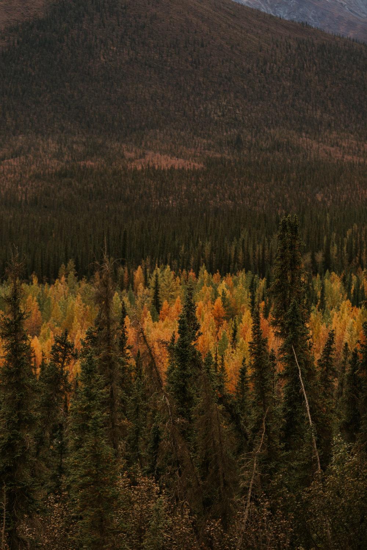 CindyGiovagnoli_Arctic_Circle_Alaska-003.jpg