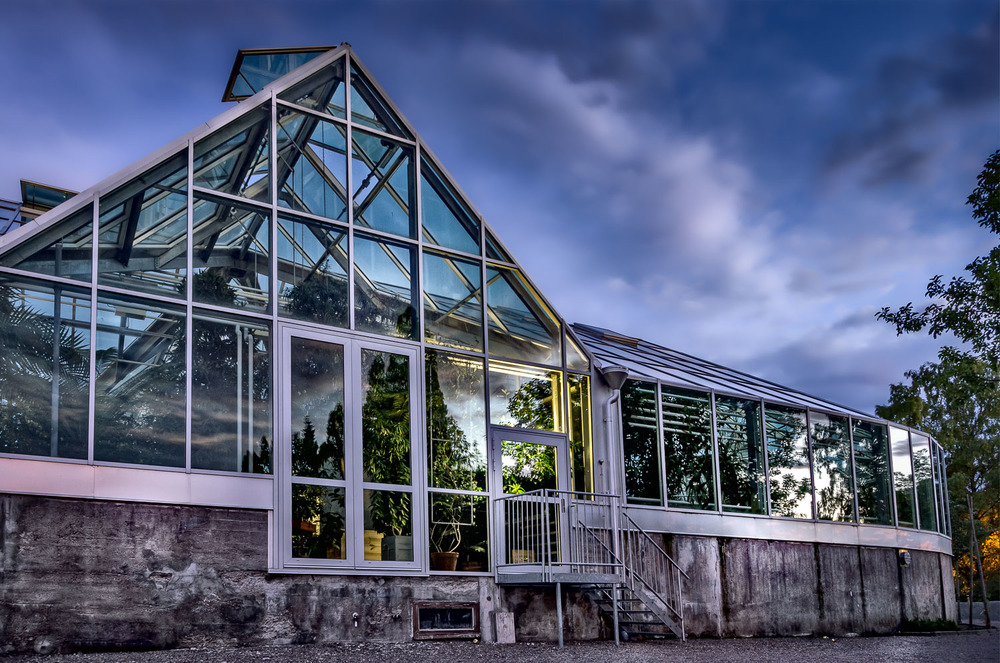 Botanical garden, Uppsala August 2011