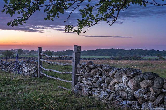 Hamra, Gotland, Sweden  #gotland #sweden #hamra #sudret #sunset #summernights
