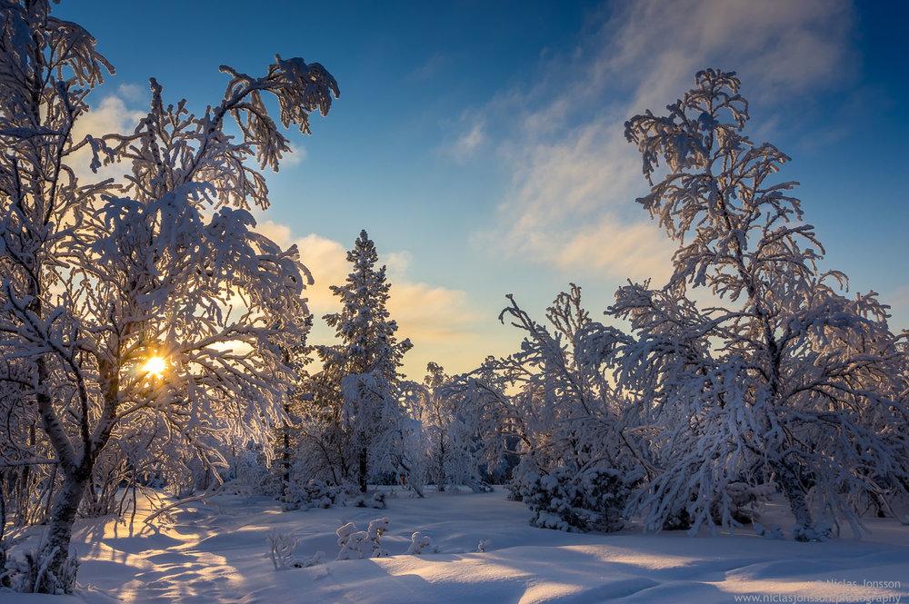 Grövelsjön, Dalarna, Seden, January 2015