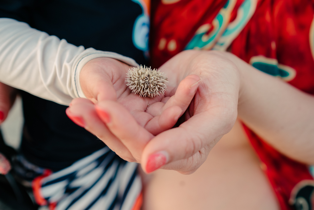 My son meeting his first sea urchin in Varadero, Cuba 2015.