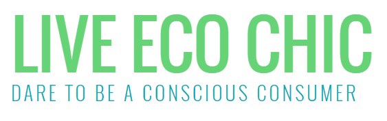 Interview with Julie @ bonJOY on Live Eco Chic