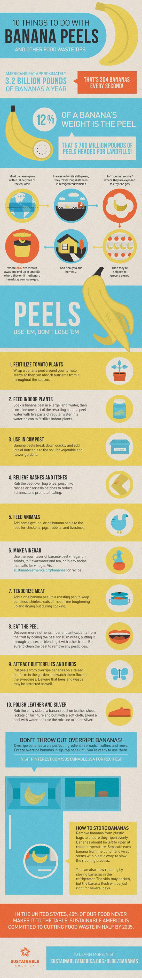 Banana Peel Uses Infographic