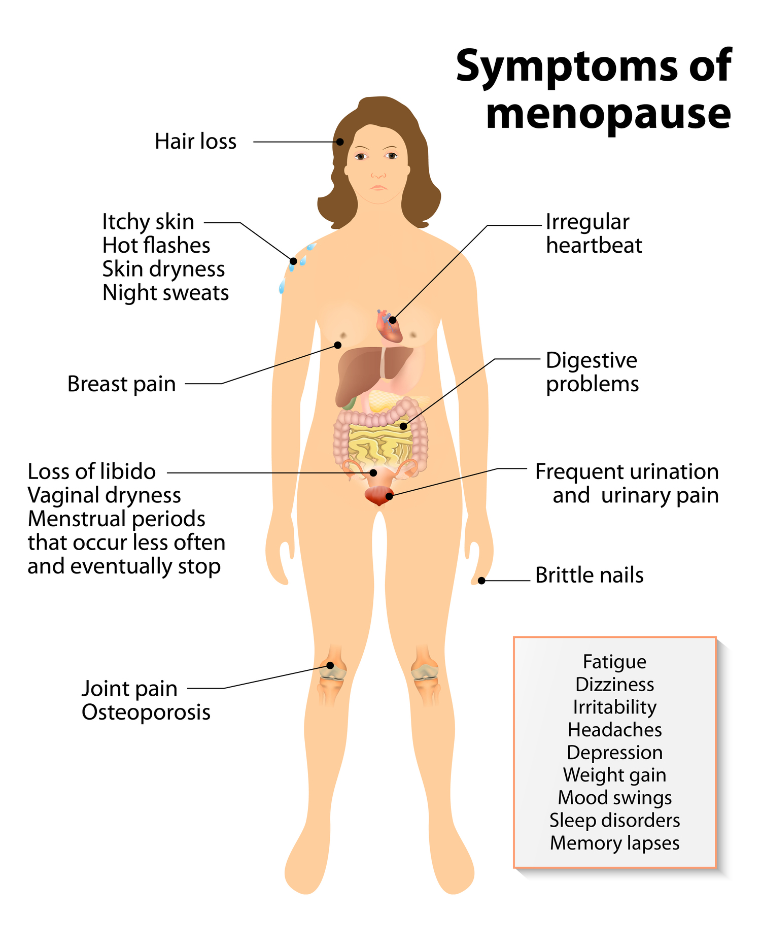 Symptoms of Menopause: Hot Flashes and Night Sweats, How Long Will ...
